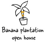 Banana plantation open house